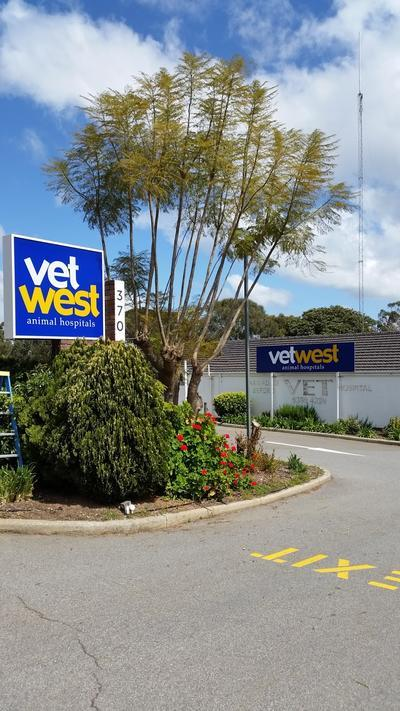 Vetwest Animal Hospitals Armadale-Byford, 370 South