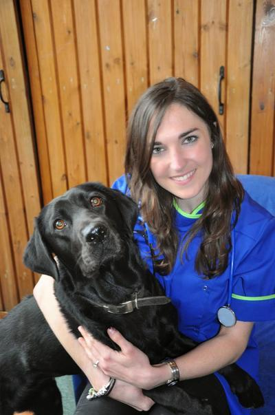 Liverpool Speke Vets4pets Inside Pets At Home Liverpool Reviews And Appointments Topvet