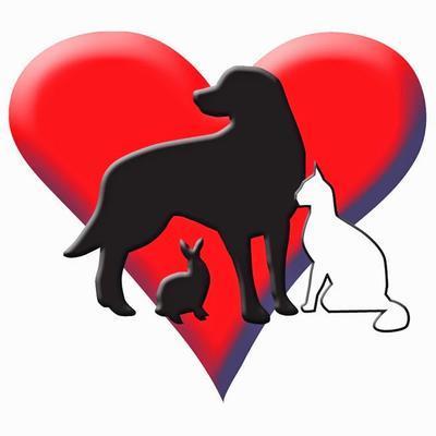 Animal Medical Center 610 Morrison Road Gahanna Reviews And