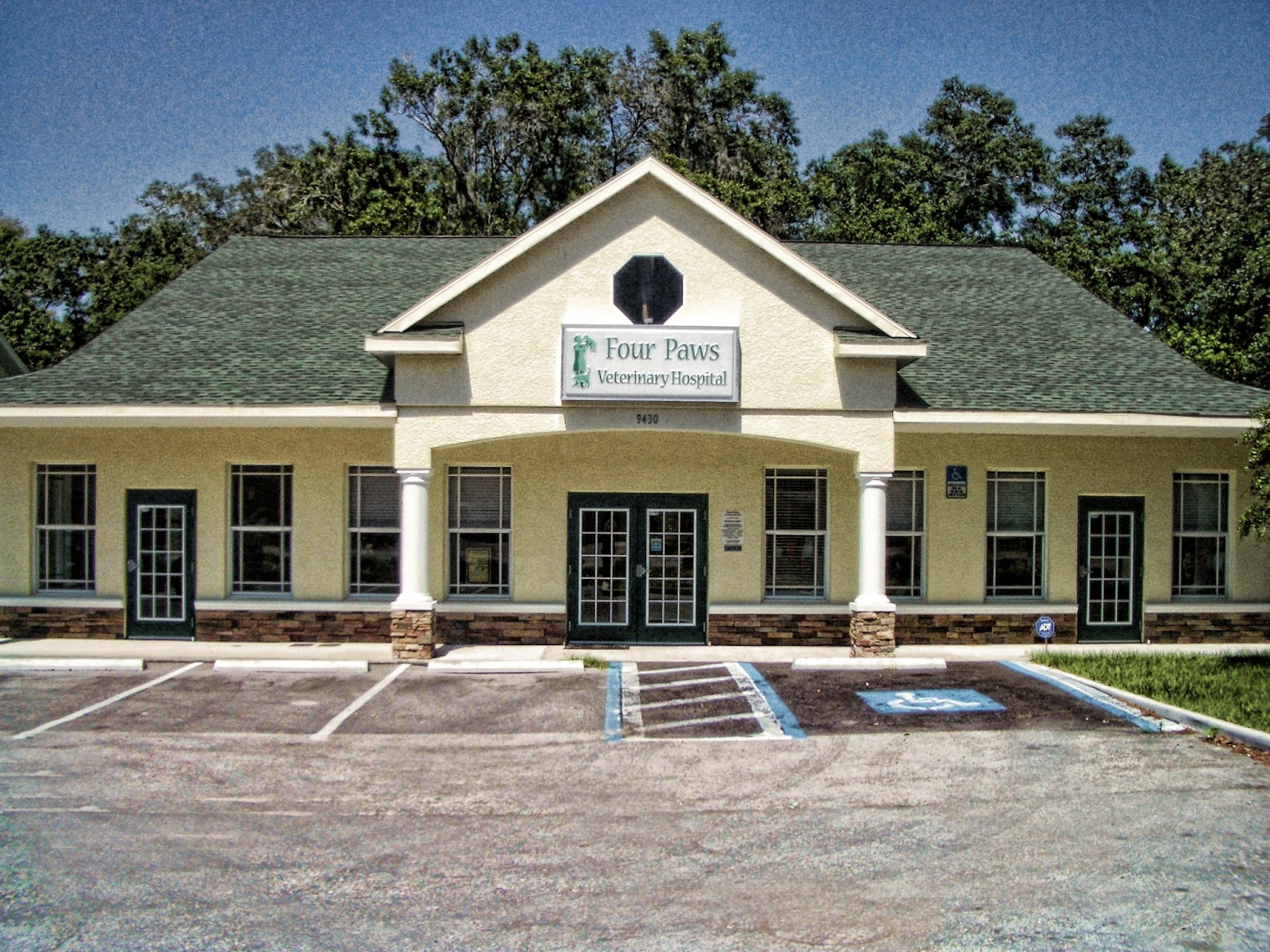 Four Paws Veterinary Hospital 9430 Balm Riverview Road Riverview Reviews And Appointments Topvet