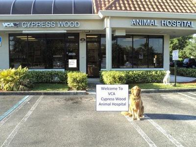 VCA Cypress Wood Animal Hospital, 10452 West Atlantic