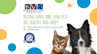Karingal veterinary hospital 328 cranbourne road frankston businesss photo businesss photo solutioingenieria Images